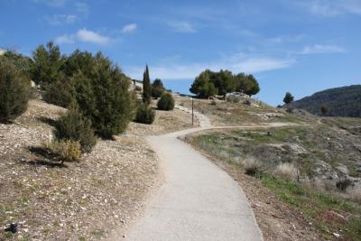Regeneración del paisaje en las laderas del Barrio del Castillo